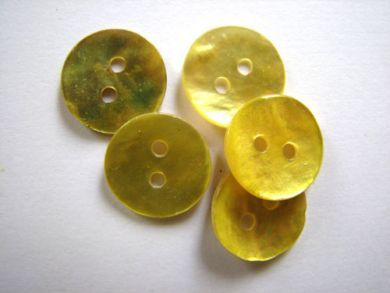 Shell Buttons Gold