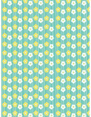 Daisy Background Paper