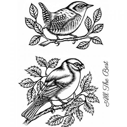 Bullfinch and Wren Clear Stamp Set