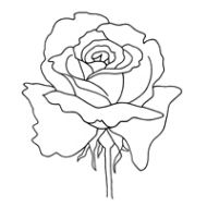Rose Clear Stamp