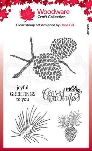 Sketchy Pine Cones Christmas Clear Stamp Set