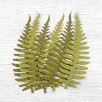Hand Made Mulberry Paper Fern Leaves