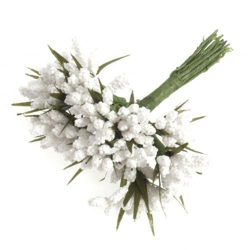 Miniature Grape Hyacinth White