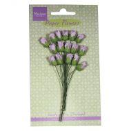 Paper Rose Buds Lavender