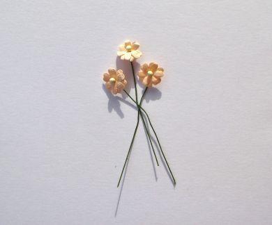 Peach Paper Flowers