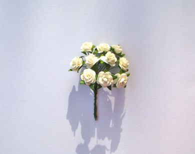 White Mulberry Paper Roses